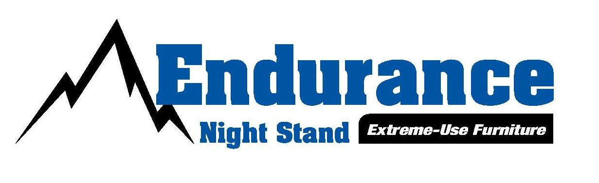 endurancenightlogo